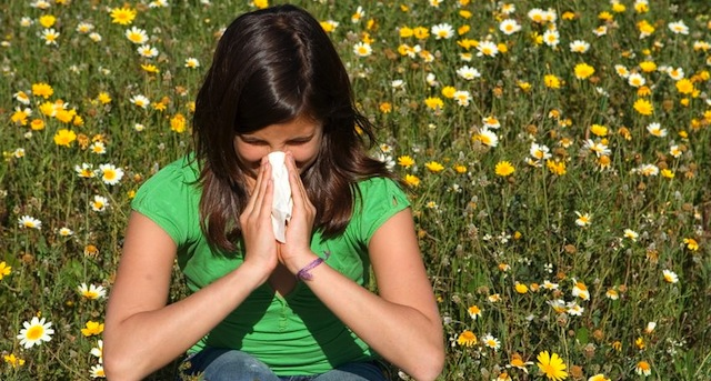 Hay Fever And Homeopathy