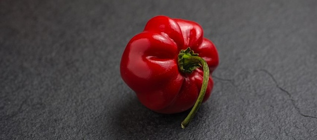 Peppers – Not Just The Aphrodisiac Of The Spice World