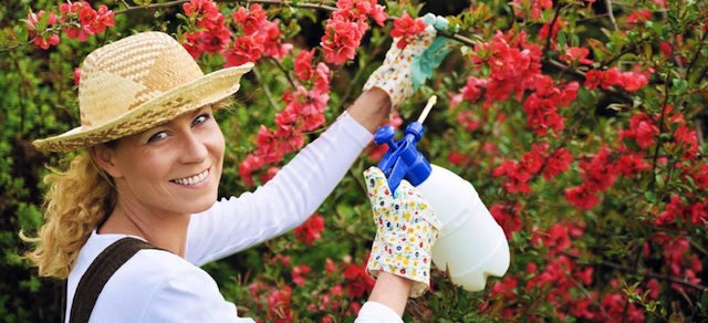 Prevention Of Injury While Gardening…
